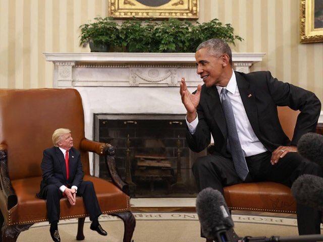 маленький Трамп