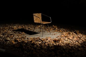 Симон Керн создает стулья из опавших листьев
