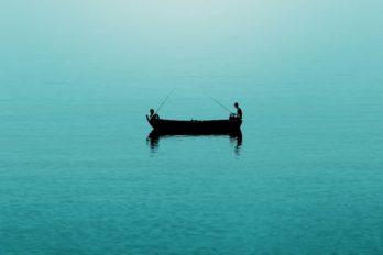 Сила тишины: почему для здоровья и работы так важно избавиться от шума
