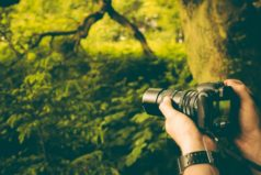 10 советов начинающим от профессионального фотографа