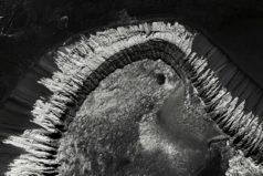 Это Марс: удивительные черно-белые фотографии планеты