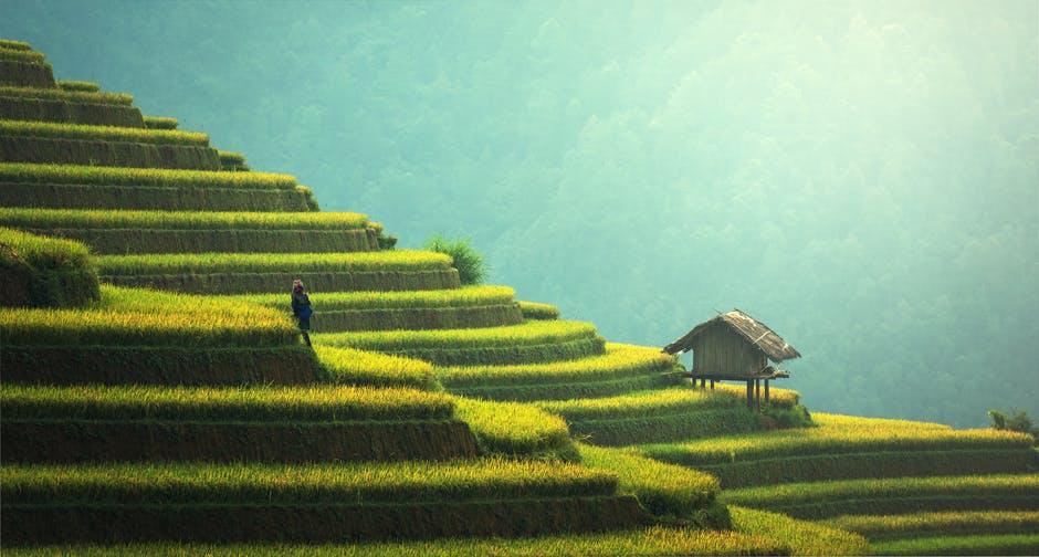 на свежем воздухе природа китай